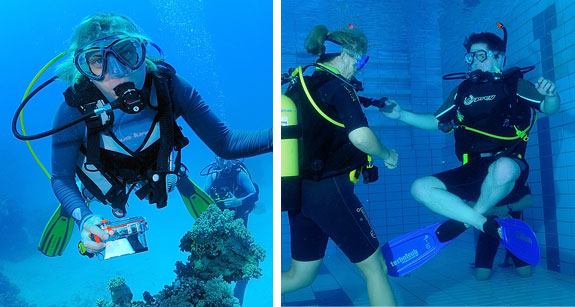 new-horizons-dive-centre